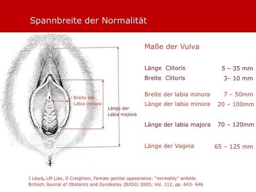 famenita vaginal geschlechtsverkehr das erste geschlechtsverkehr