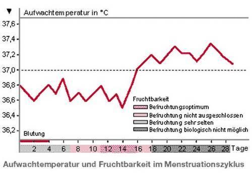 Entbindungstermin Berechnen Nach Eisprung : nat rliche verh tungsmethoden ~ Themetempest.com Abrechnung